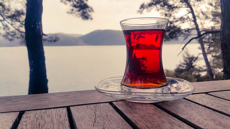 Is Chaga Tea Safe During Pregnancy