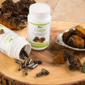Chaga Extract Dietary Supplement C